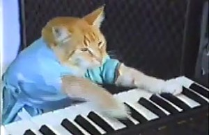 youtube_cat_0930